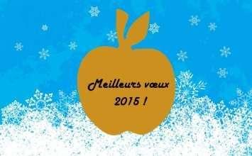 meilleurs voeux 2015 sopregim